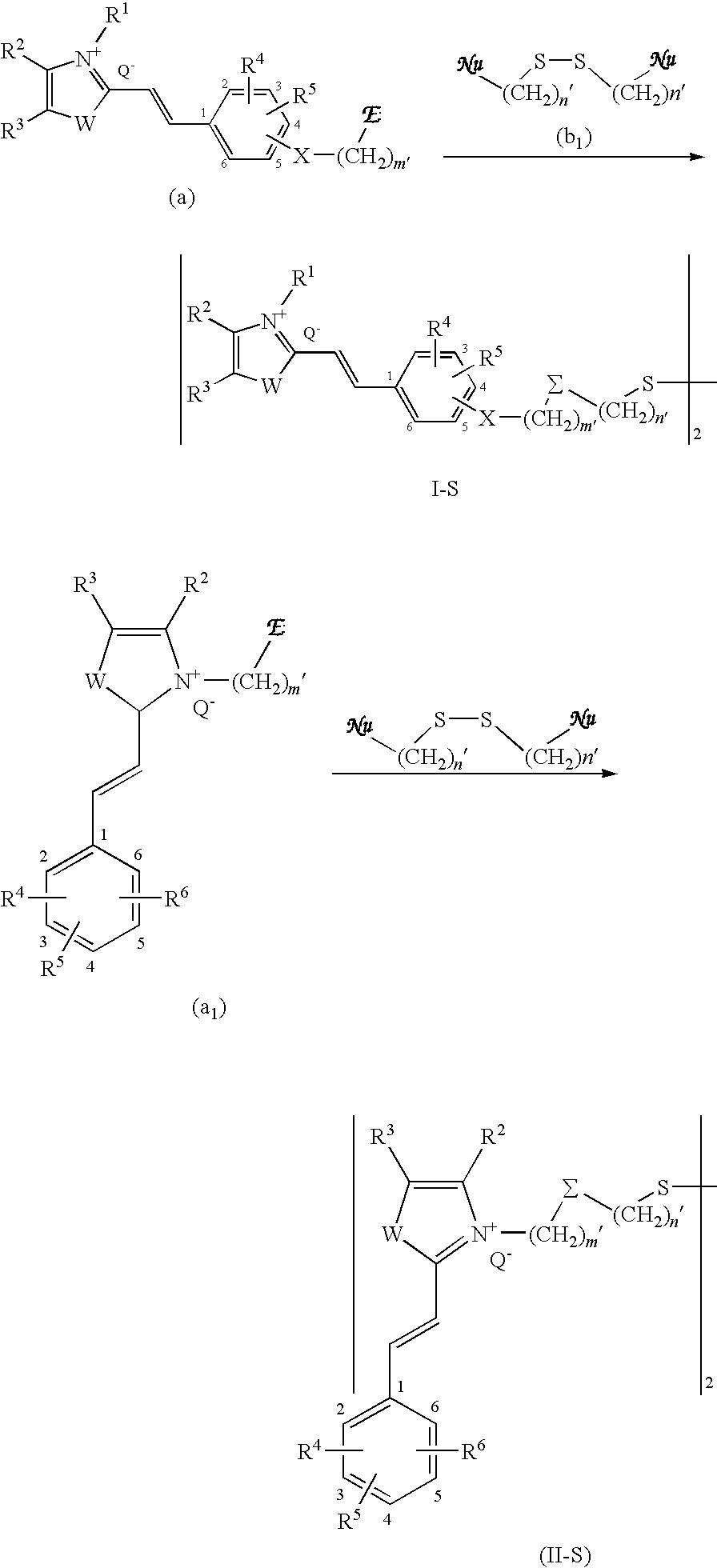 Figure US20090211038A1-20090827-C00028