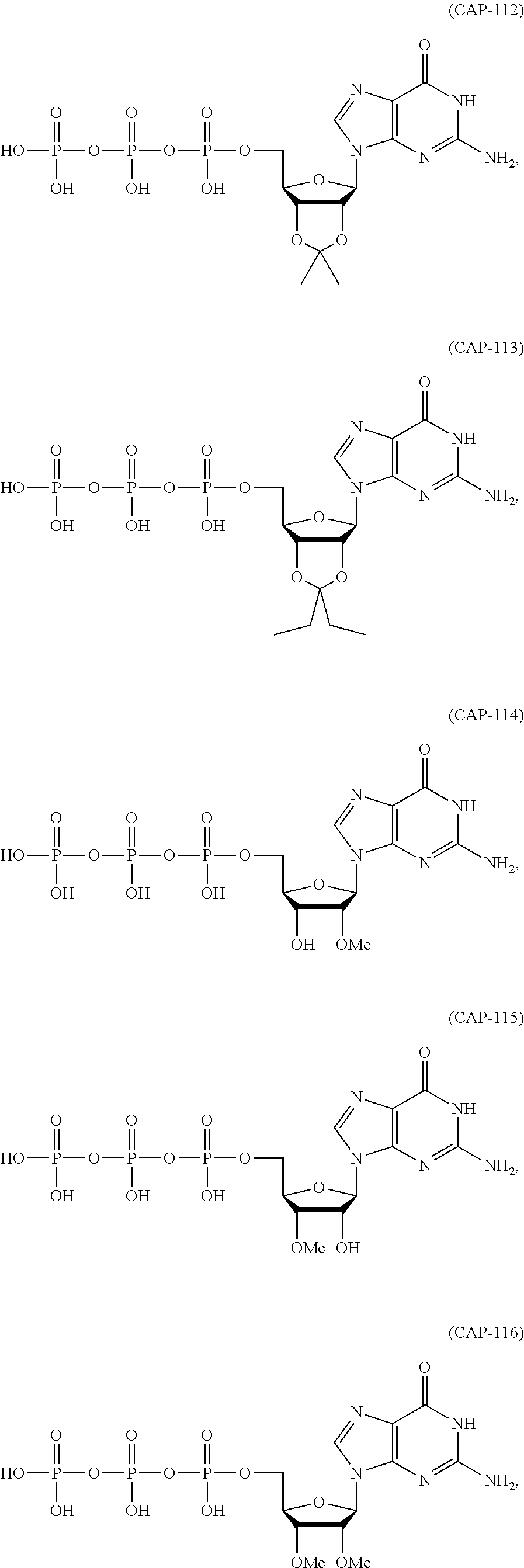 Best Prohormone 2020 US10155029B2   Terminally modified RNA   Google Patents