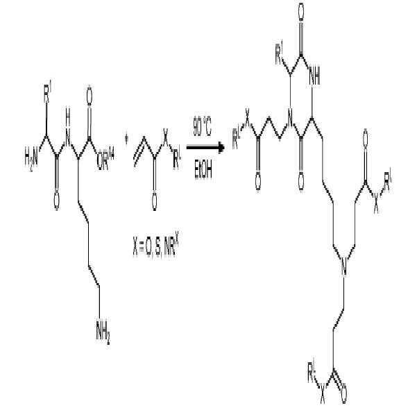 Figure pct00146