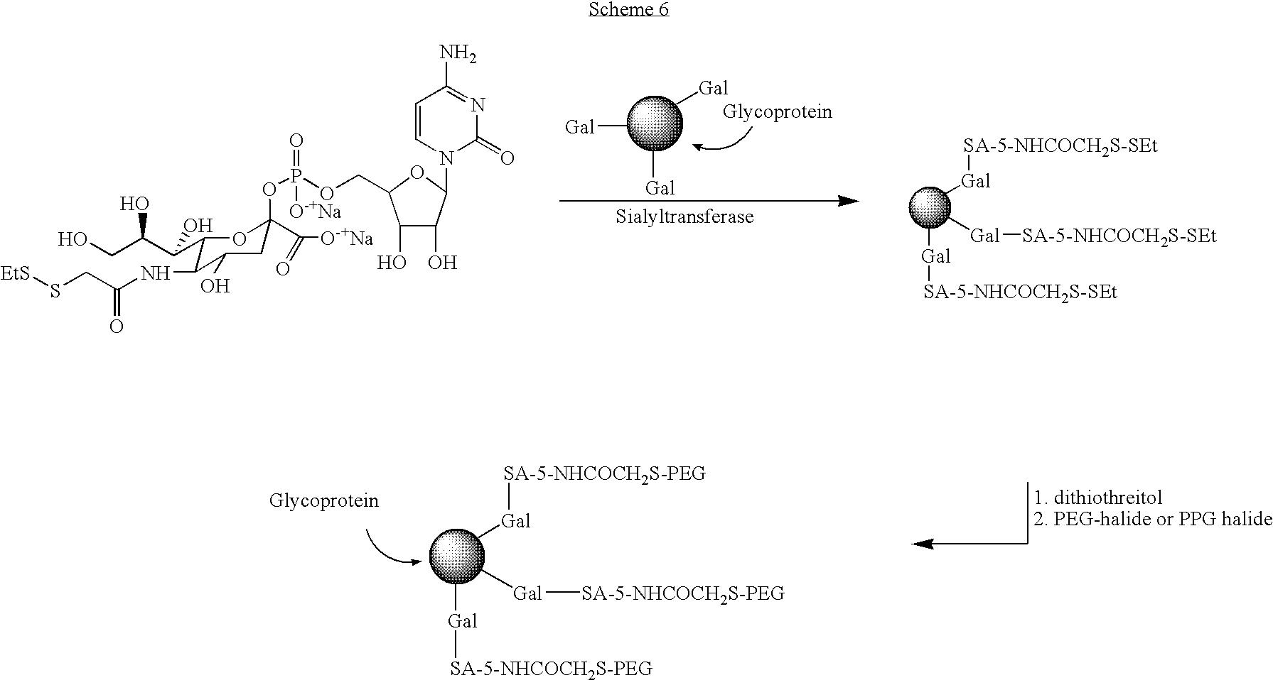 Figure US07932364-20110426-C00020