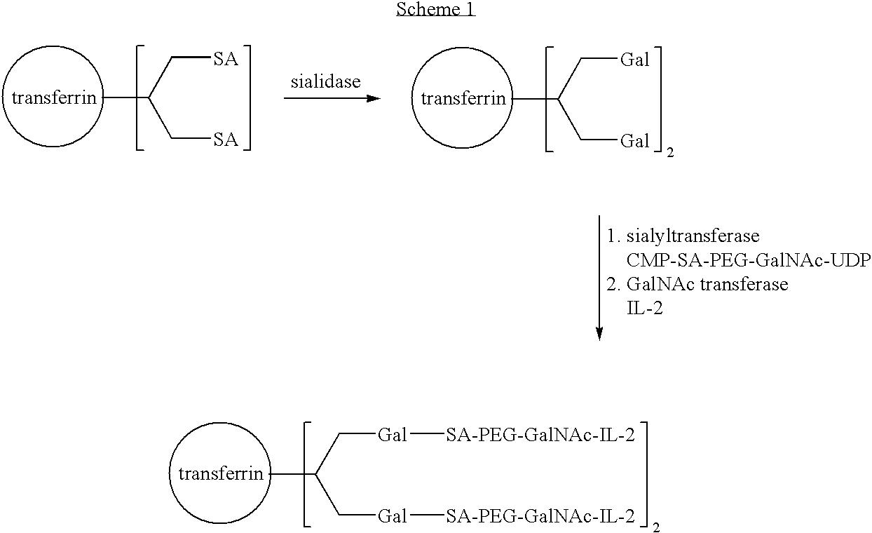 Figure US20040115168A1-20040617-C00018