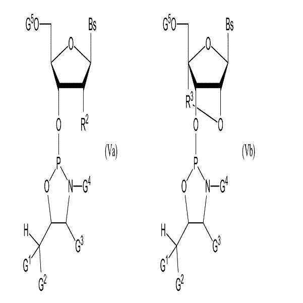 Figure 112015015674384-pct00007