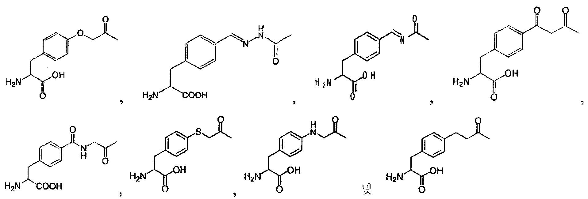 Figure 112010038971676-pct00012