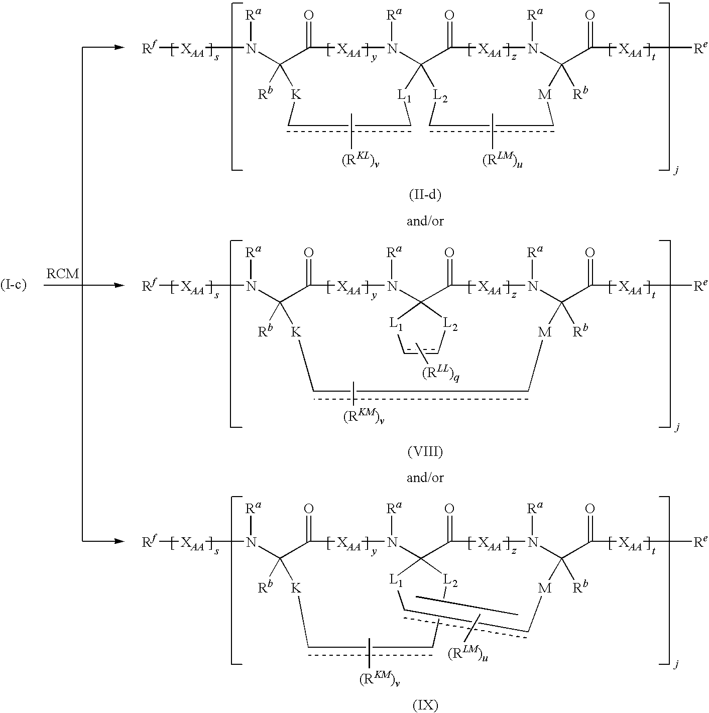 US20100184645A1 - Stitched polypeptides - Google Patents