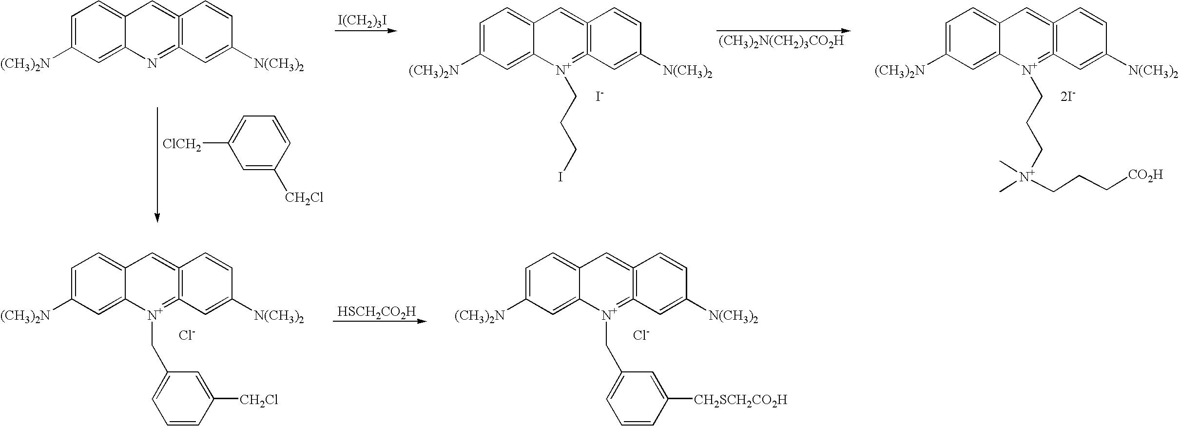 Figure US20060211028A1-20060921-C00058