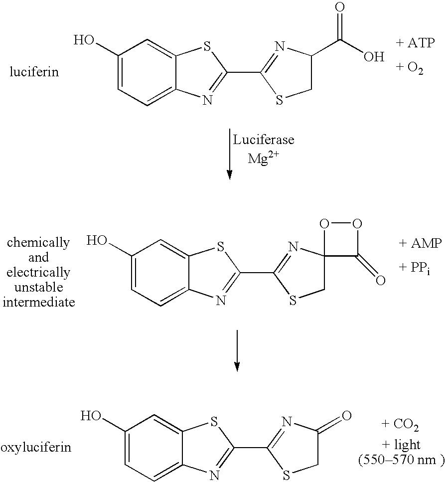 Figure US07422868-20080909-C00001