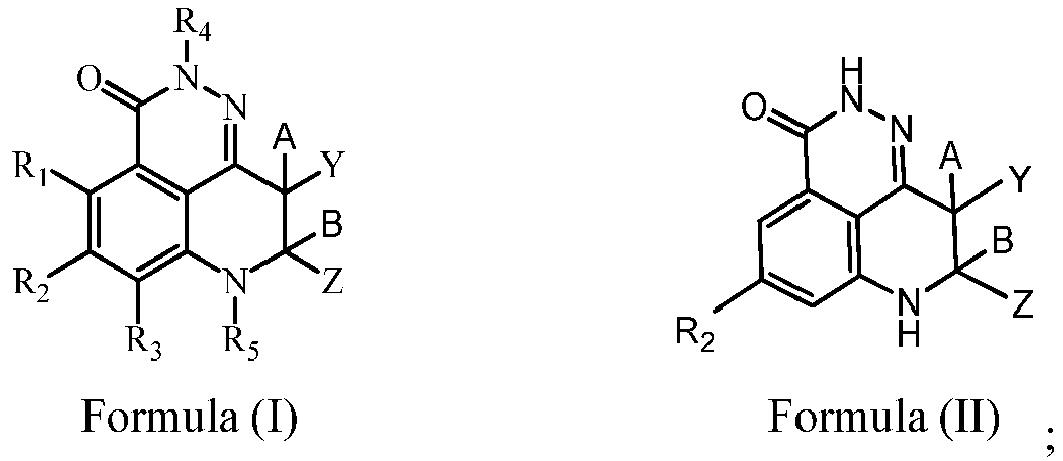 Ep3241832a1 Dihydropyridophthalazinone Inhibitors Of Poly Adp