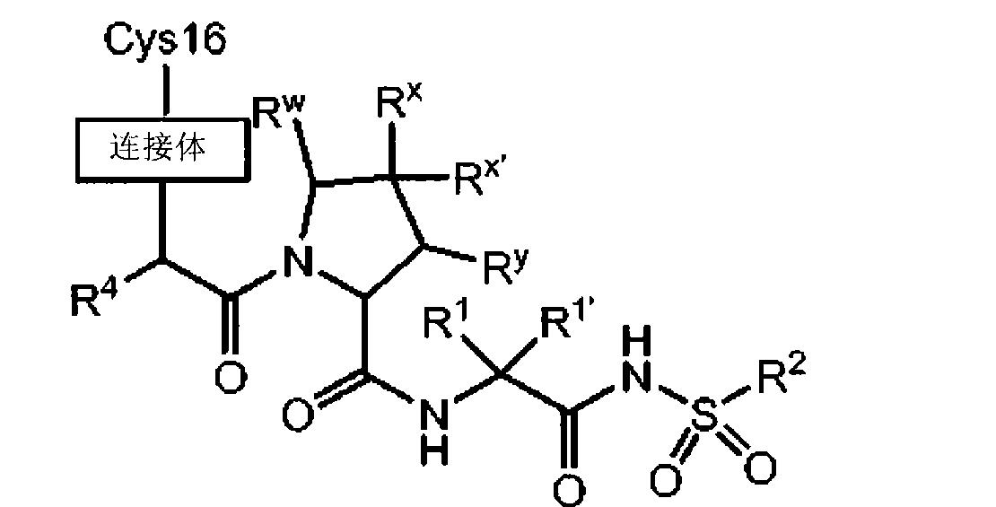 Figure CN101951770BD01112