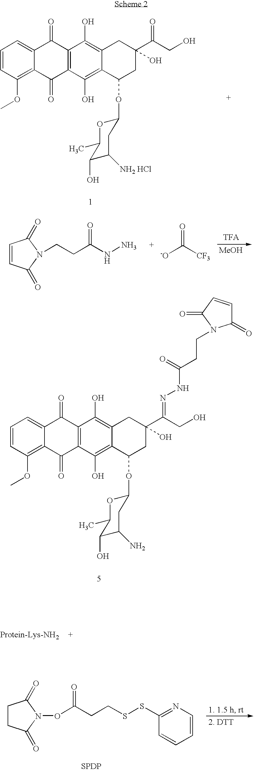 Figure US20060223134A1-20061005-C00026