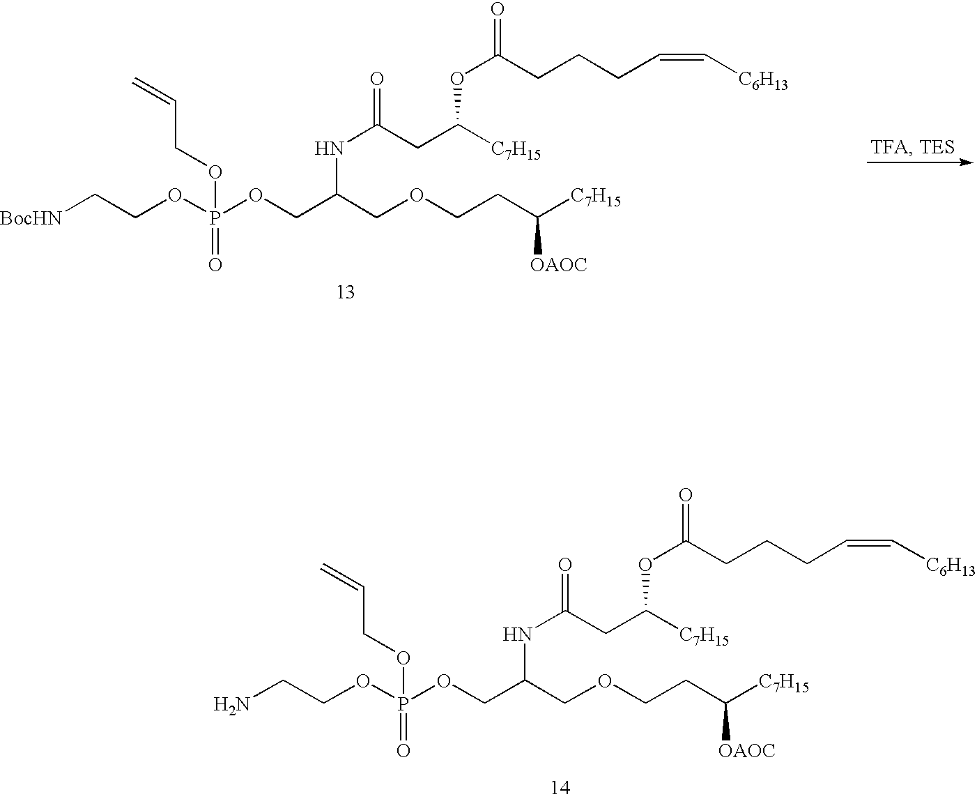 Figure US06551600-20030422-C00015