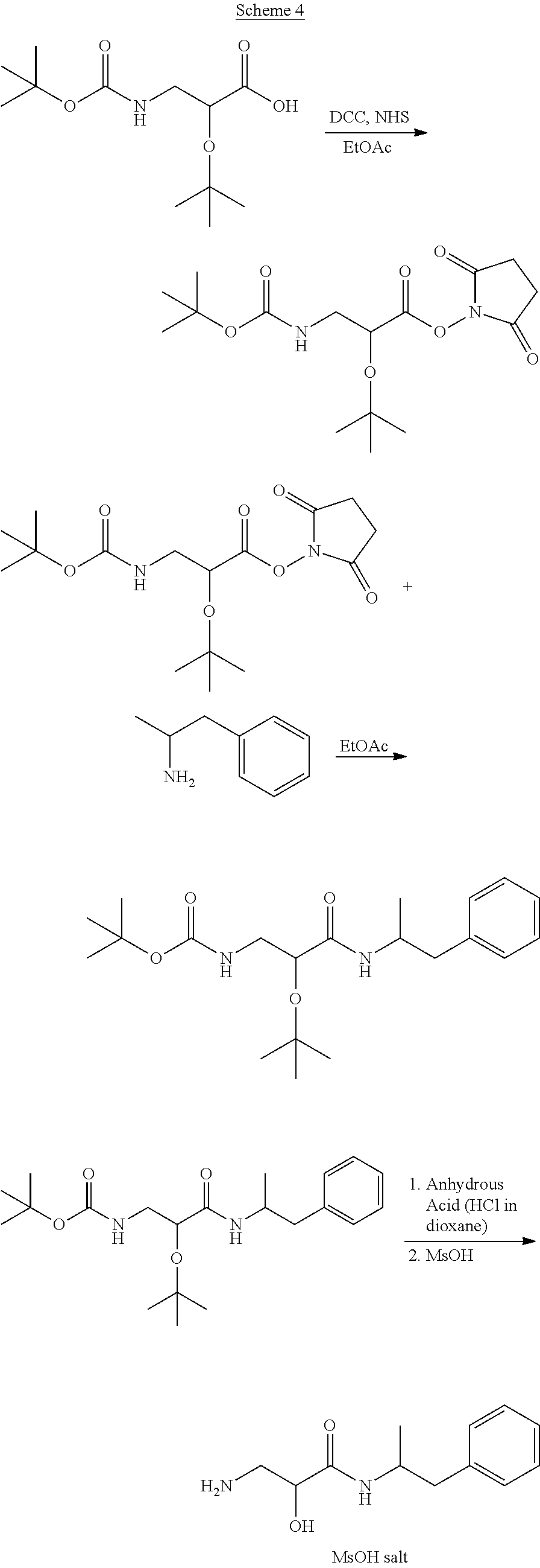 US20110213034A1 - Polar Hydrophilic Prodrugs of Amphetamine and