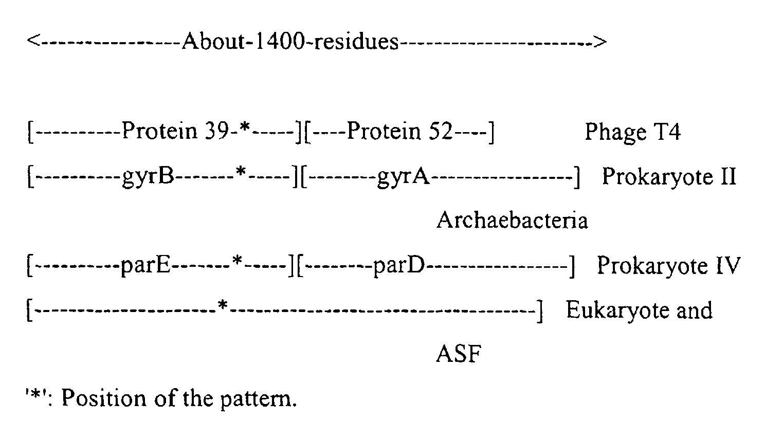 EP1059354A2 - Sequence-determined DNA fragments and corresponding