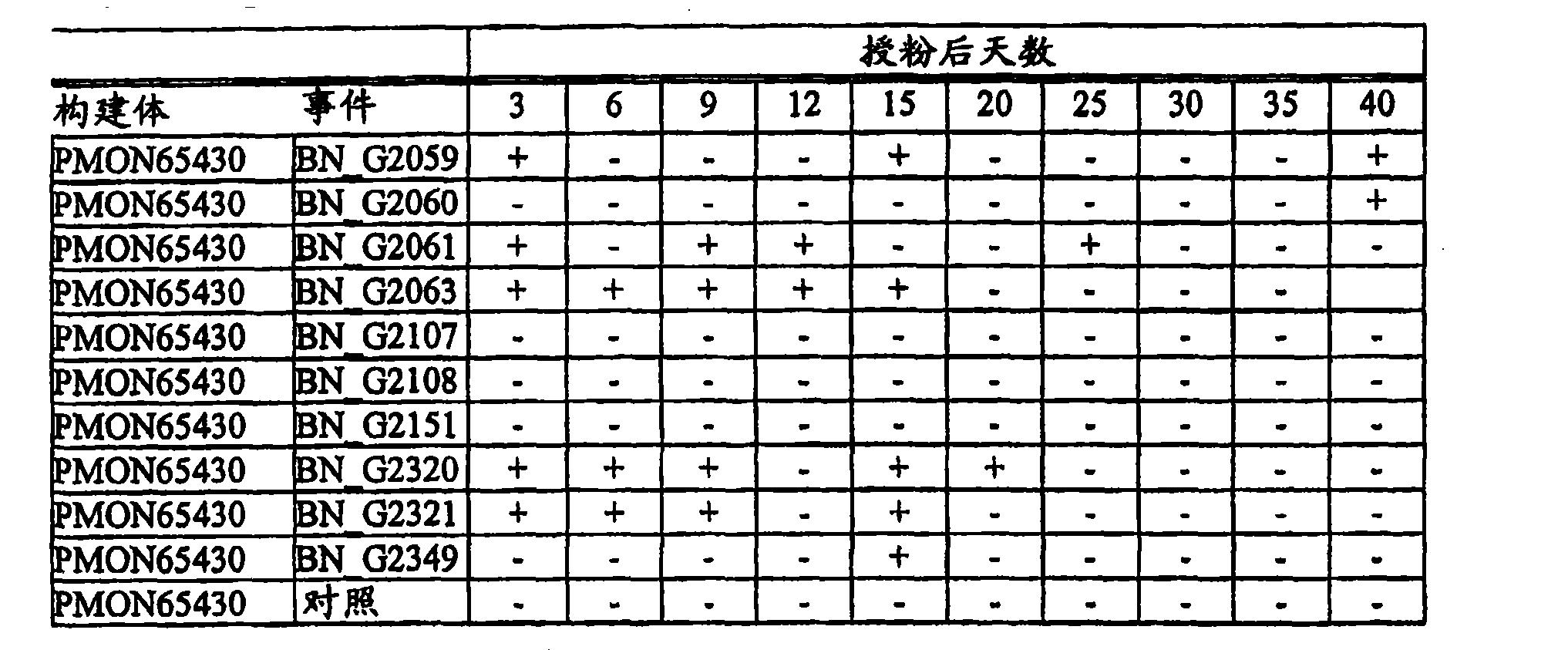 Figure CN101056983BD00192