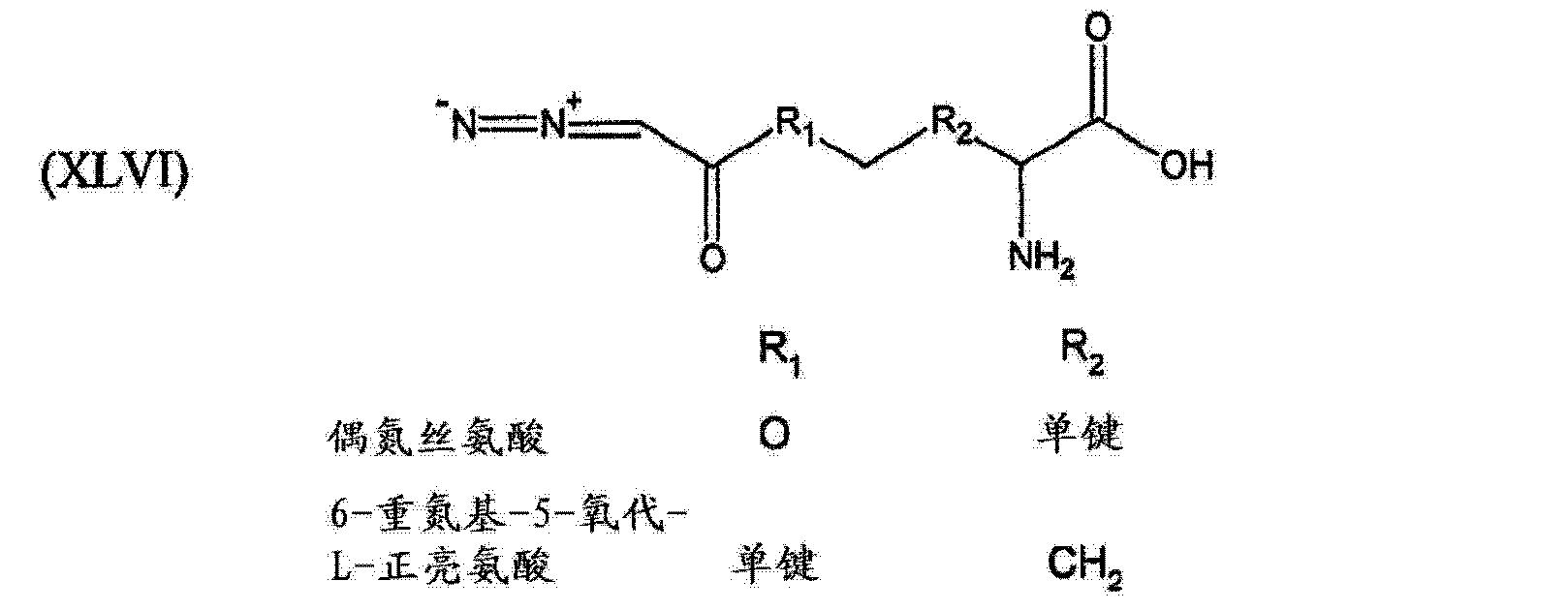 Figure CN104174071AD00862