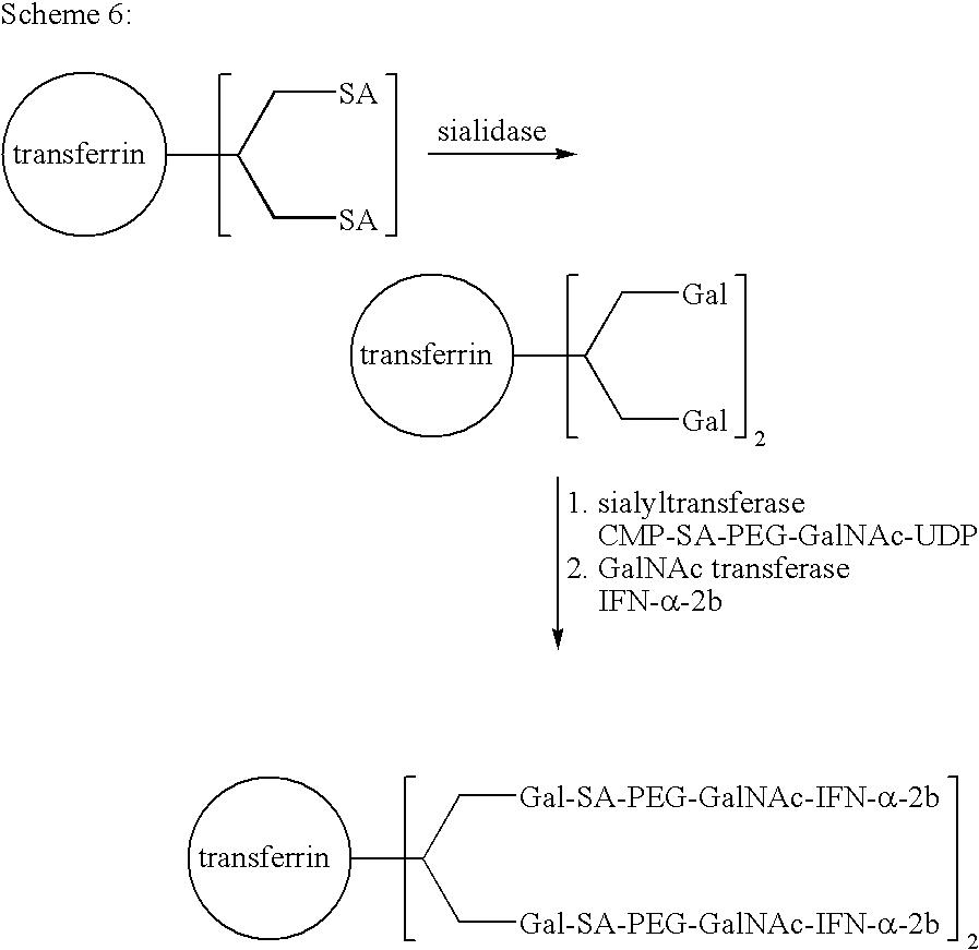 Figure US20080280818A1-20081113-C00056