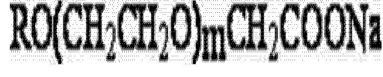 Figure CN102220693BD00042