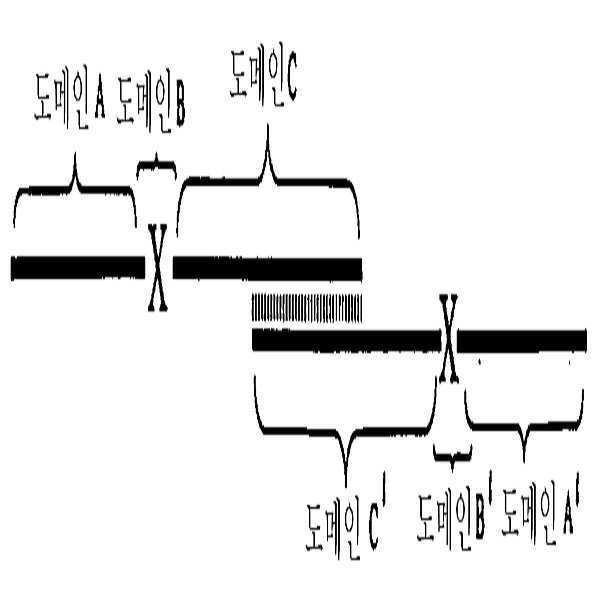 Figure 112011061461093-pct00070