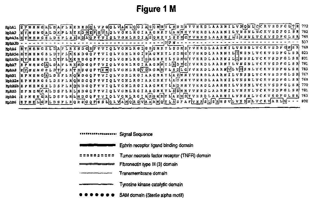 Figure imgaf013