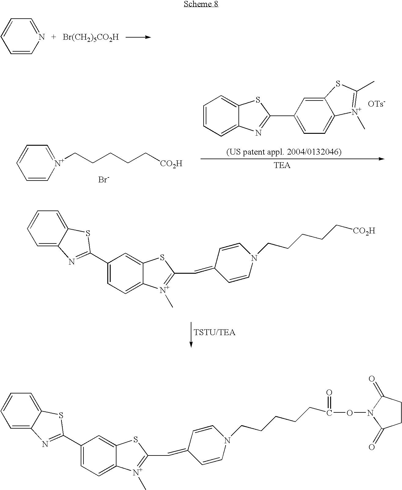 Figure US20060211028A1-20060921-C00061