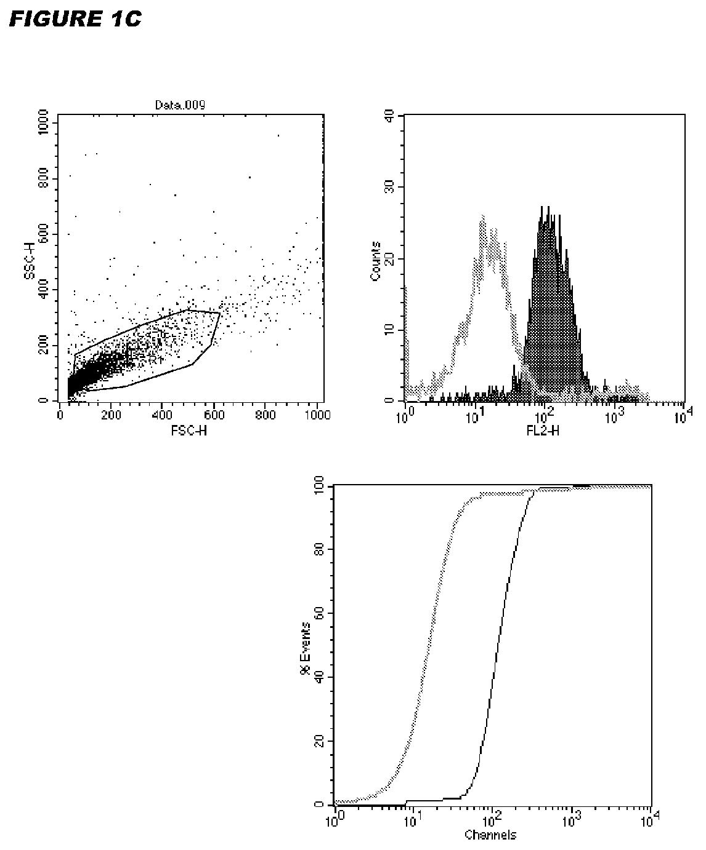 Figure imgaf002