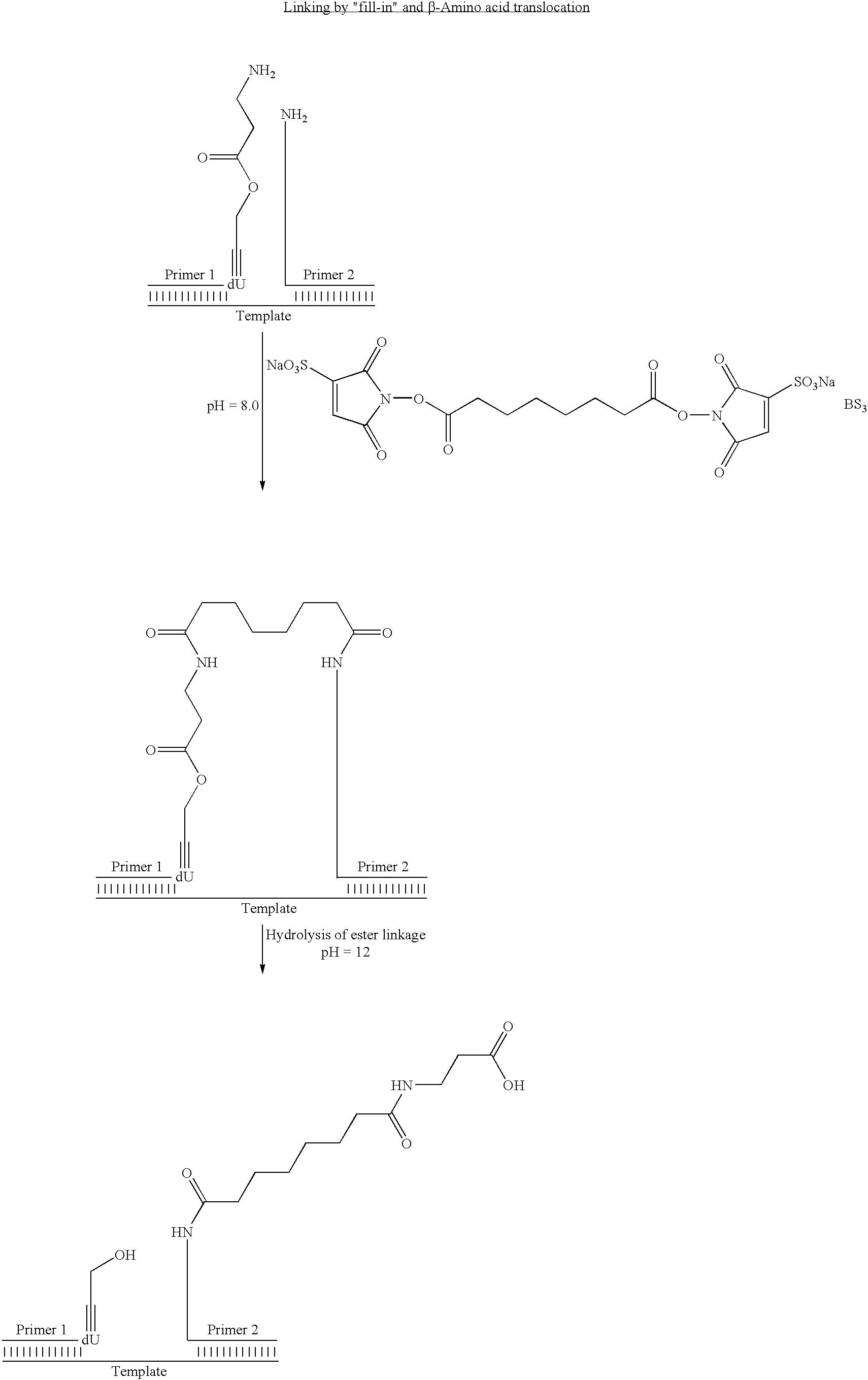 Figure US07727713-20100601-C00091