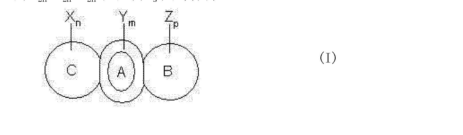 Figure CN101356662BC00122
