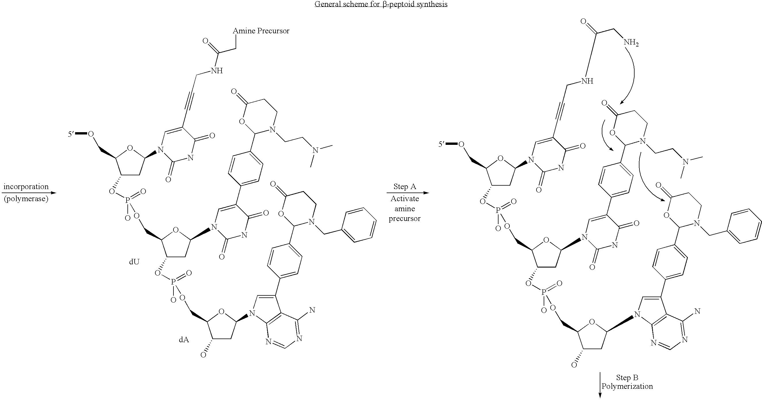 Figure US07727713-20100601-C00107