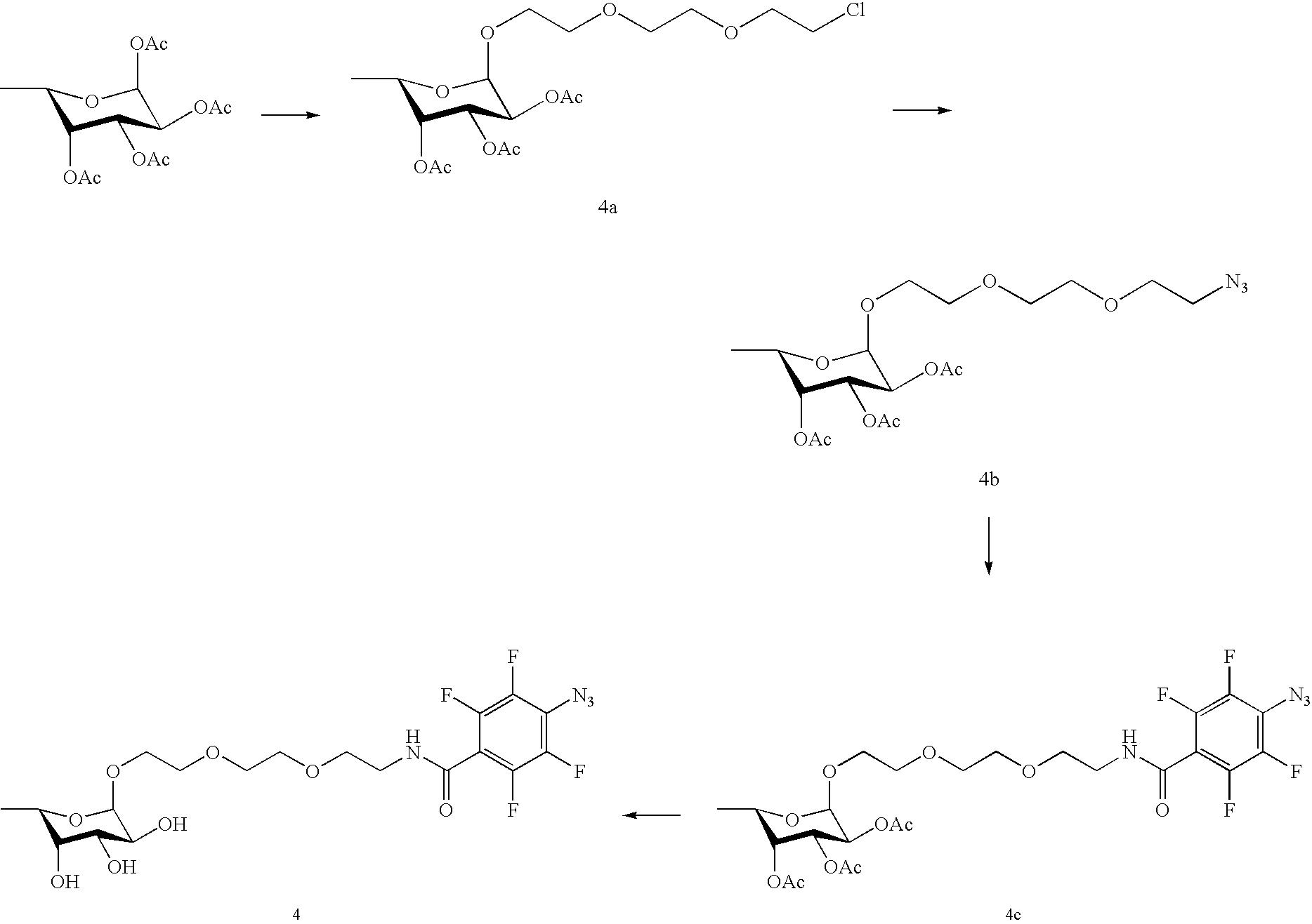 Figure US20100028559A1-20100204-C00029