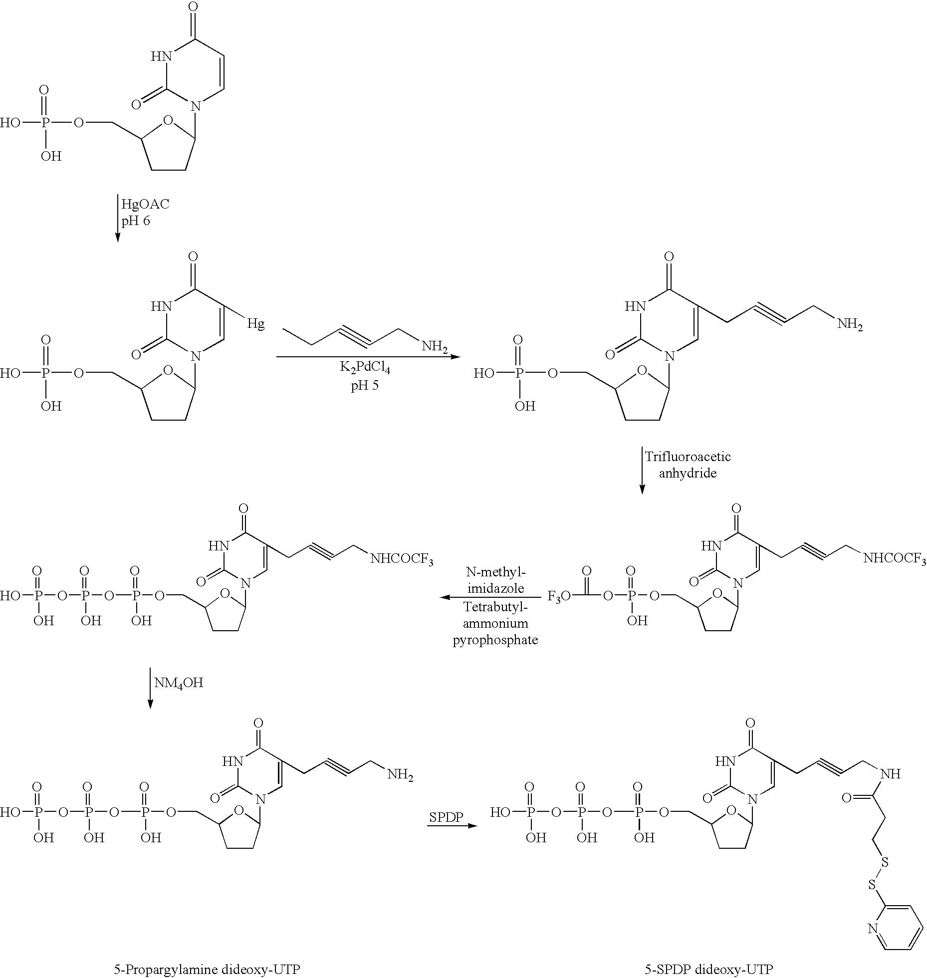 Figure US06579704-20030617-C00004