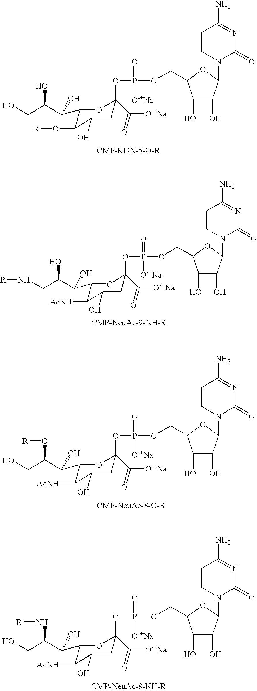 Figure US07439043-20081021-C00093