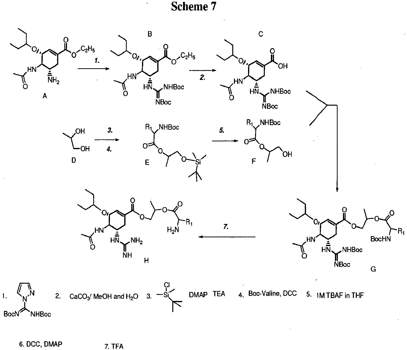 EP2276479B1 - Prodrugs of neuraminidase inhibitors - Google Patents