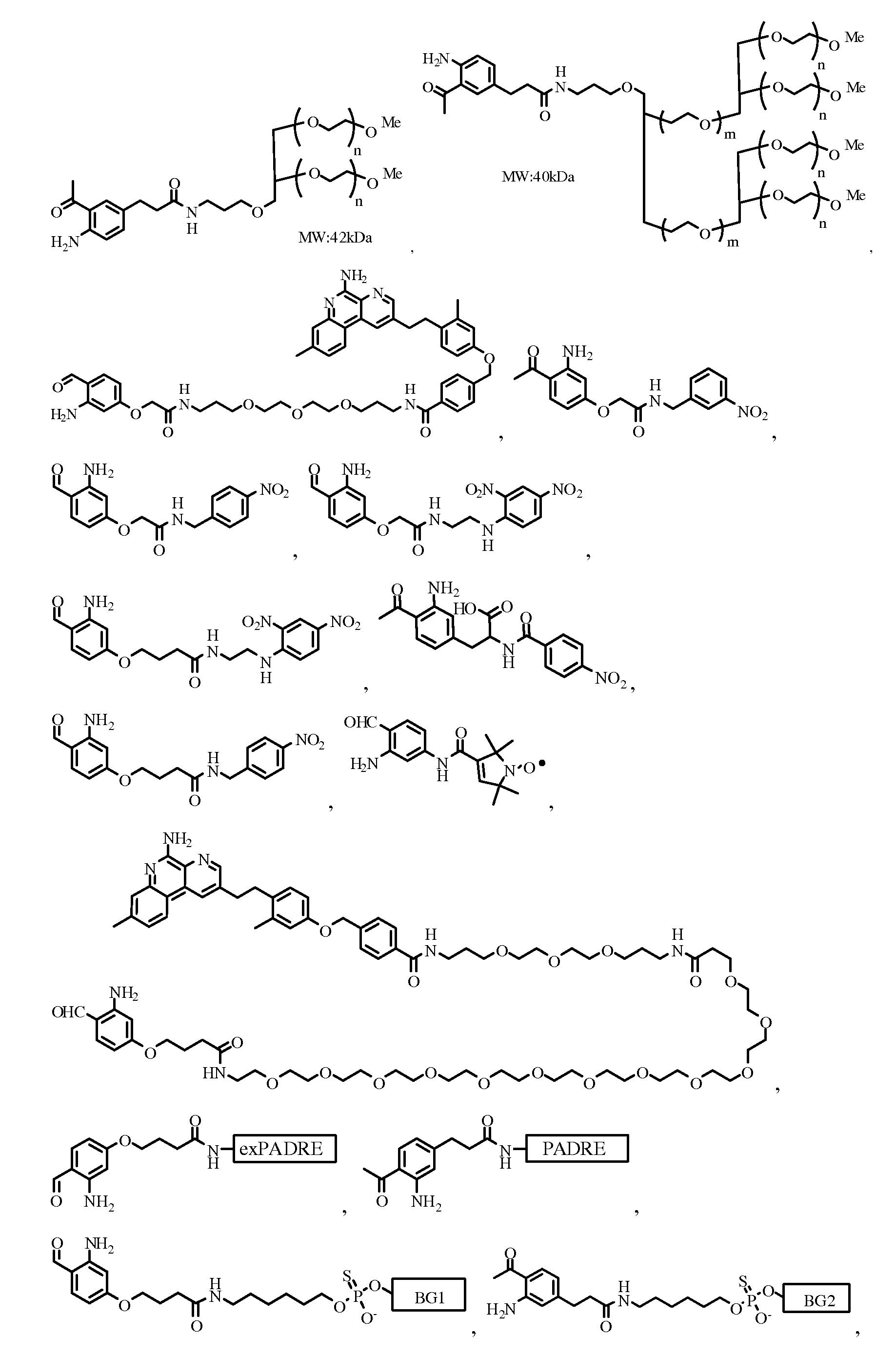 Figure pat00256