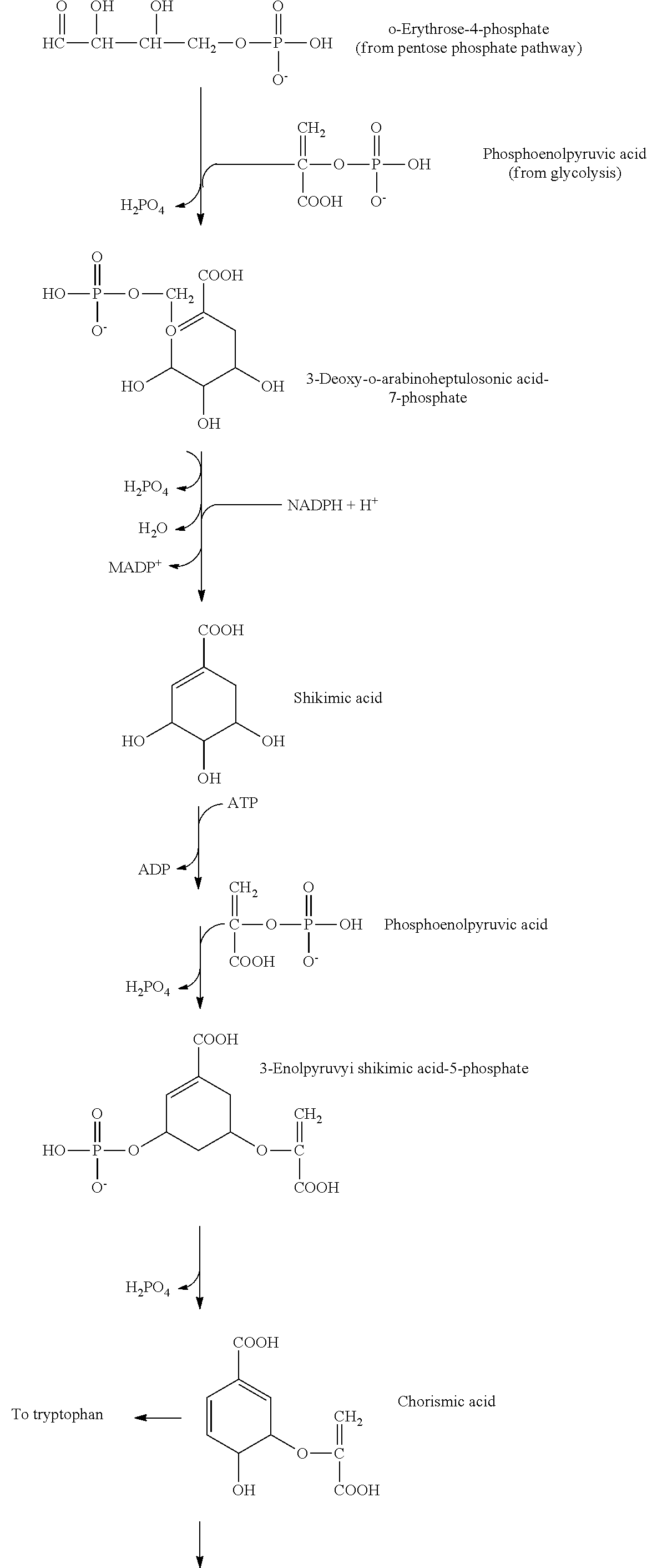 US20120077247A1 - Processing biomass - Google Patents