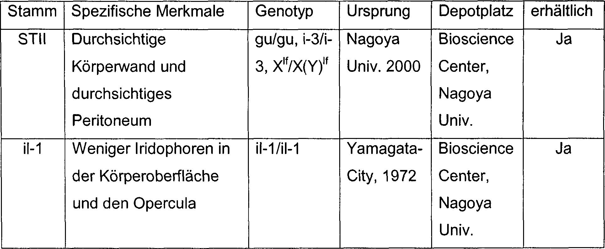 Charmant Kontext Anhaltspunkte Einer Tabelle 5Klasse Galerie - Super ...