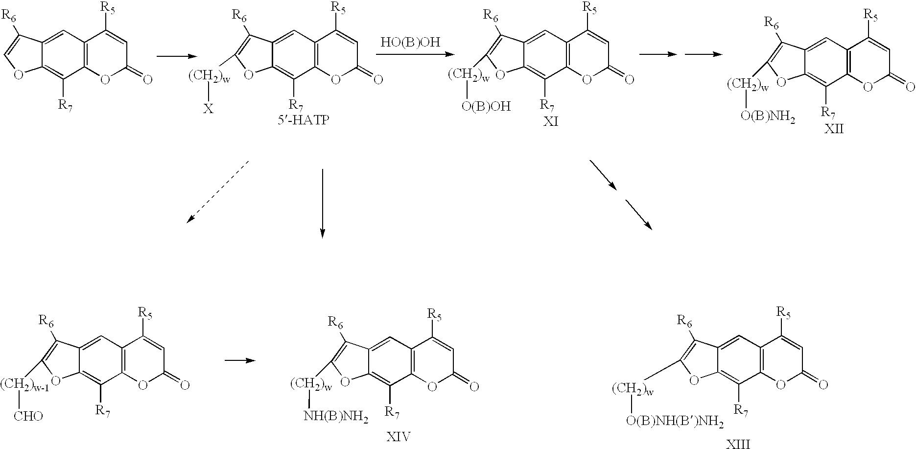 Figure US06503699-20030107-C00005