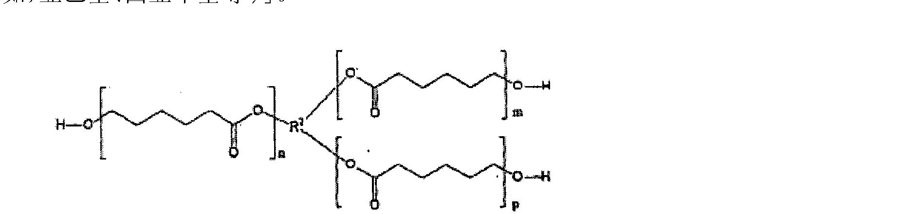 Figure CN101679588BD00052