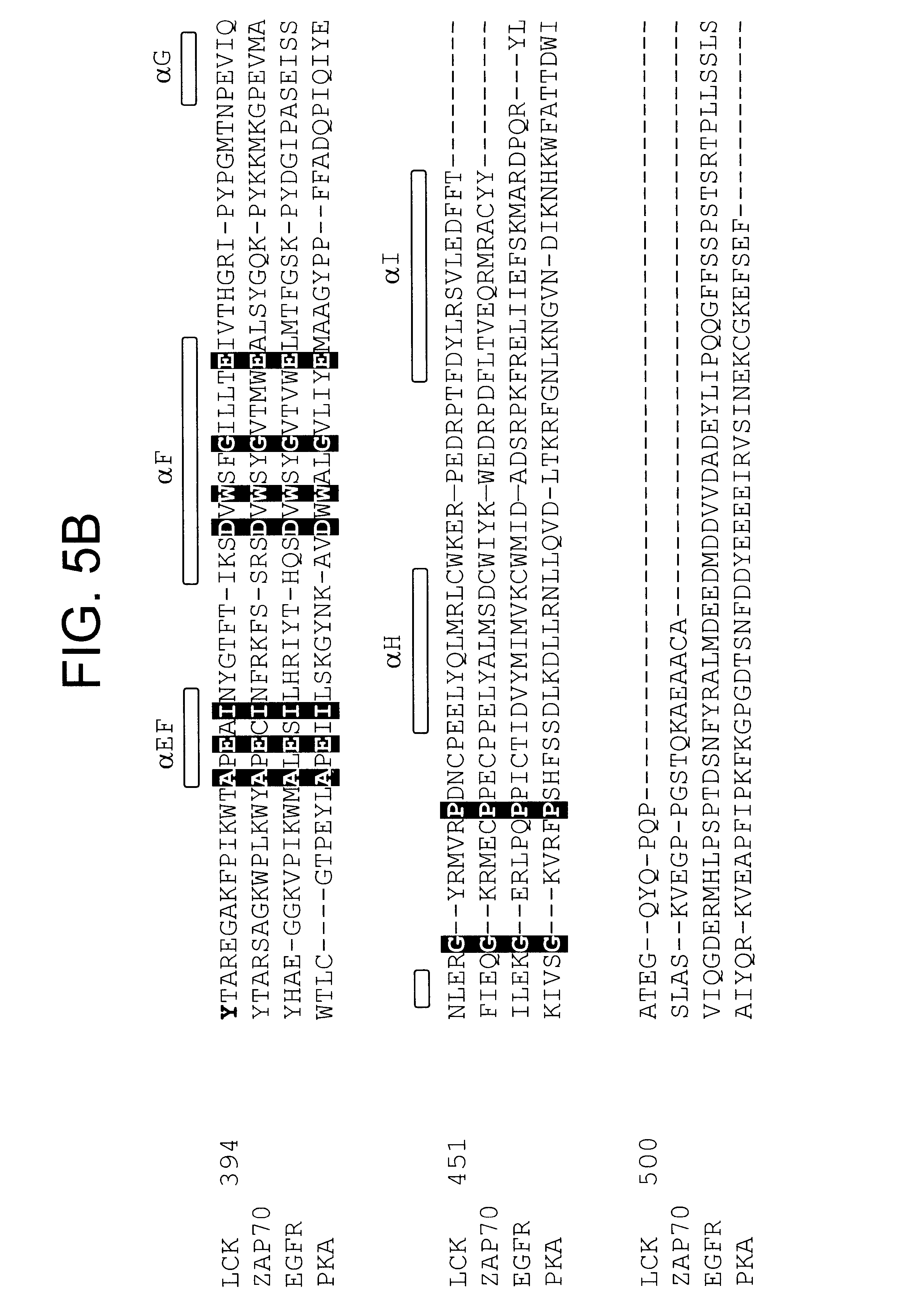 US6589758B1 - Crystal of a kinase-ligand complex and methods of use -  Google Patents 6fc12c82b