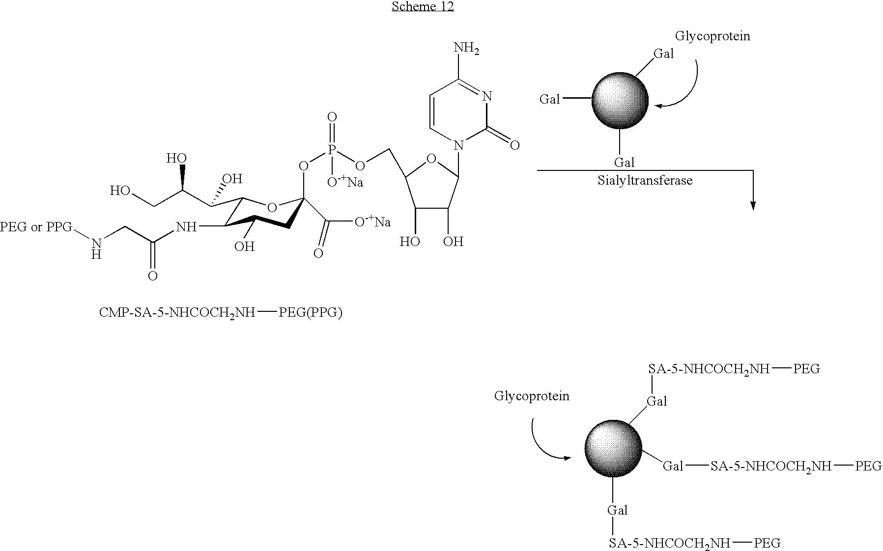 Figure US07439043-20081021-C00104