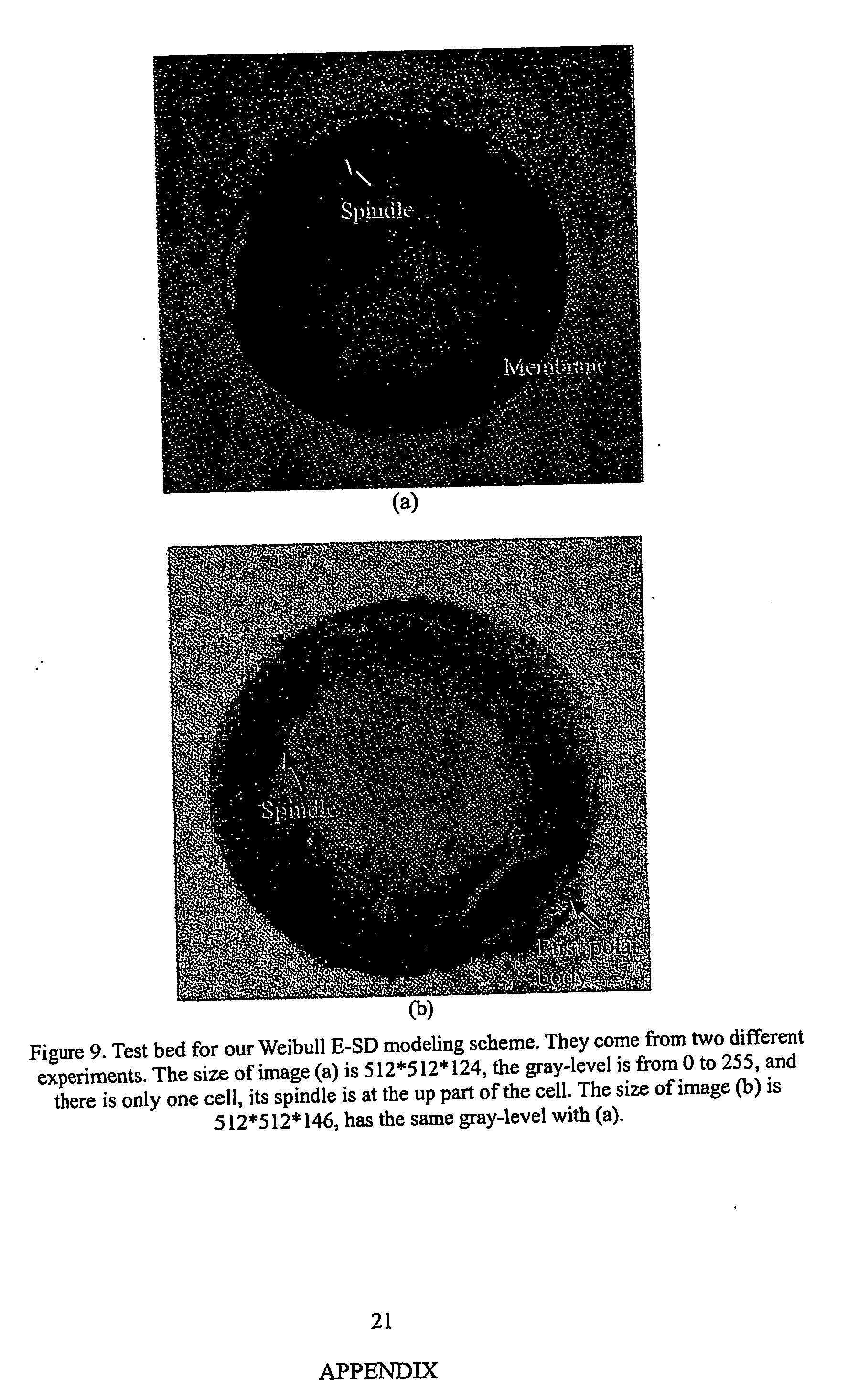 Figure US20050168460A1-20050804-P00016