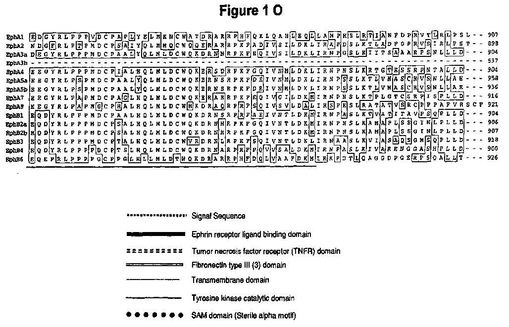 Figure imgaf015