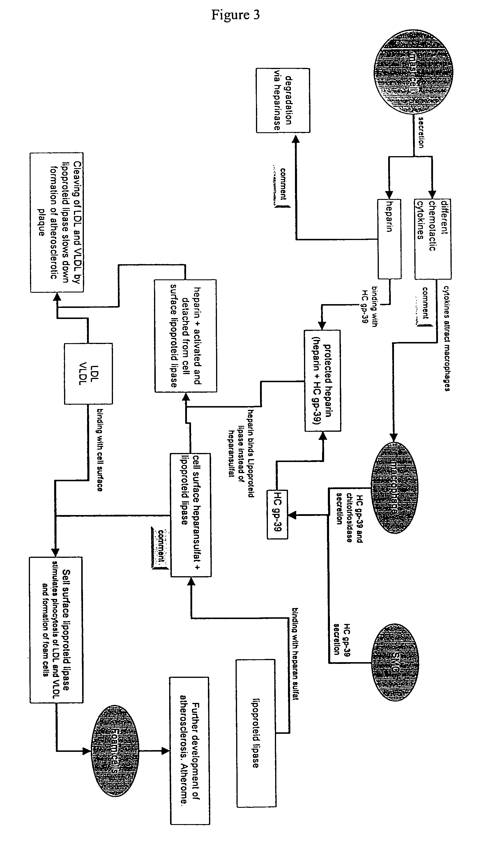 Wiring Diagram In Addition 1997 Land Rover Discovery Along With 1970