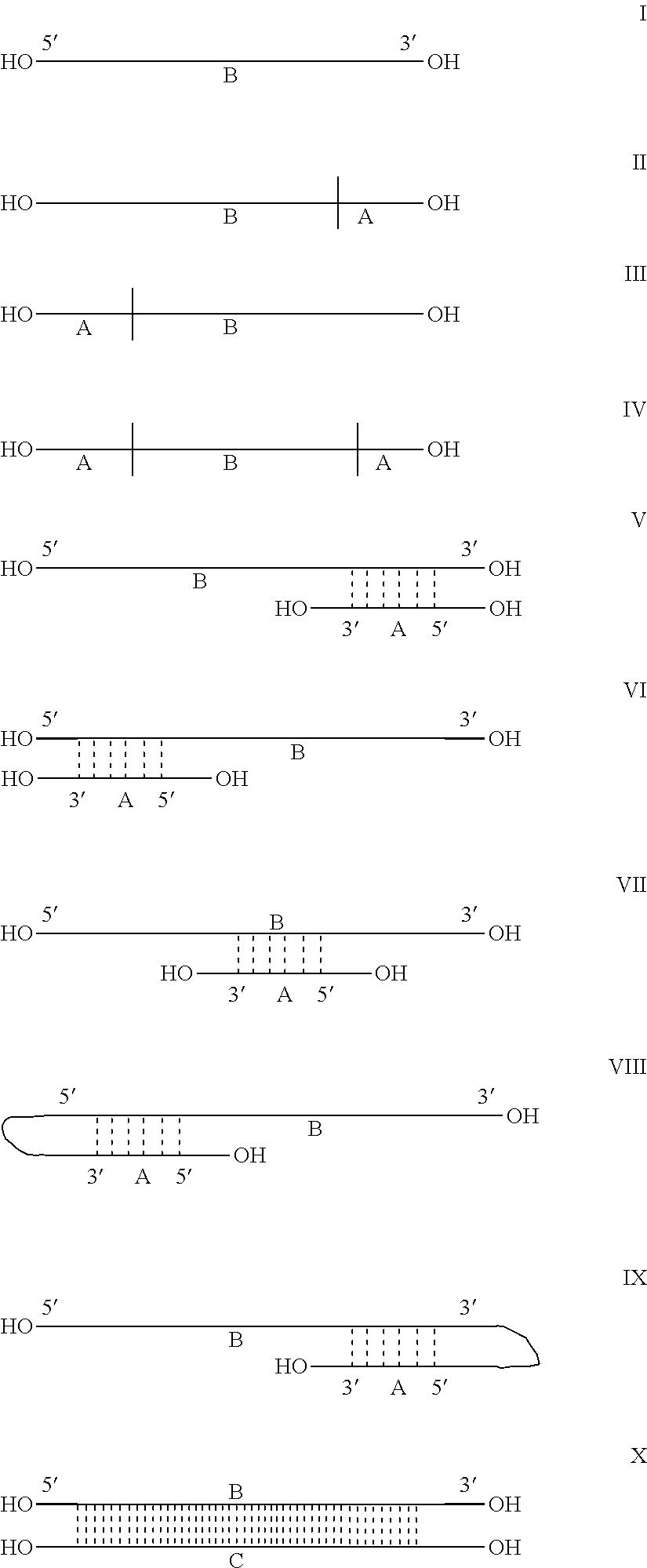 Figure US20110118339A1-20110519-C00016
