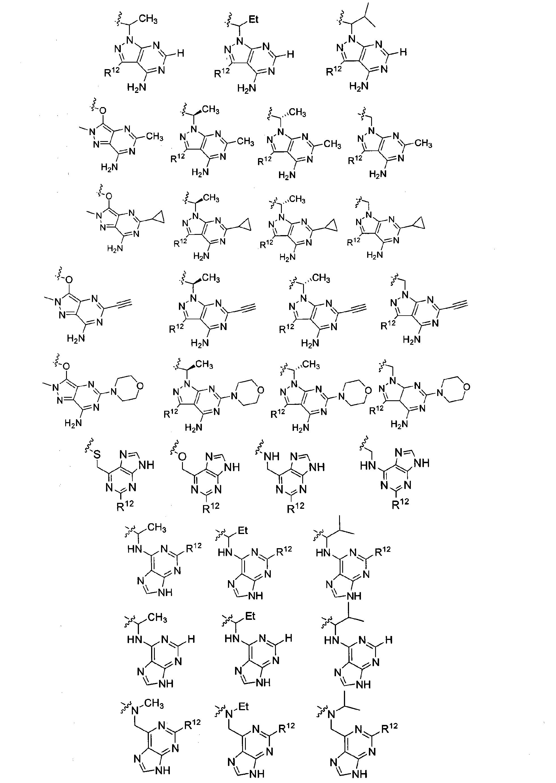 Figure CN101965335BD00362