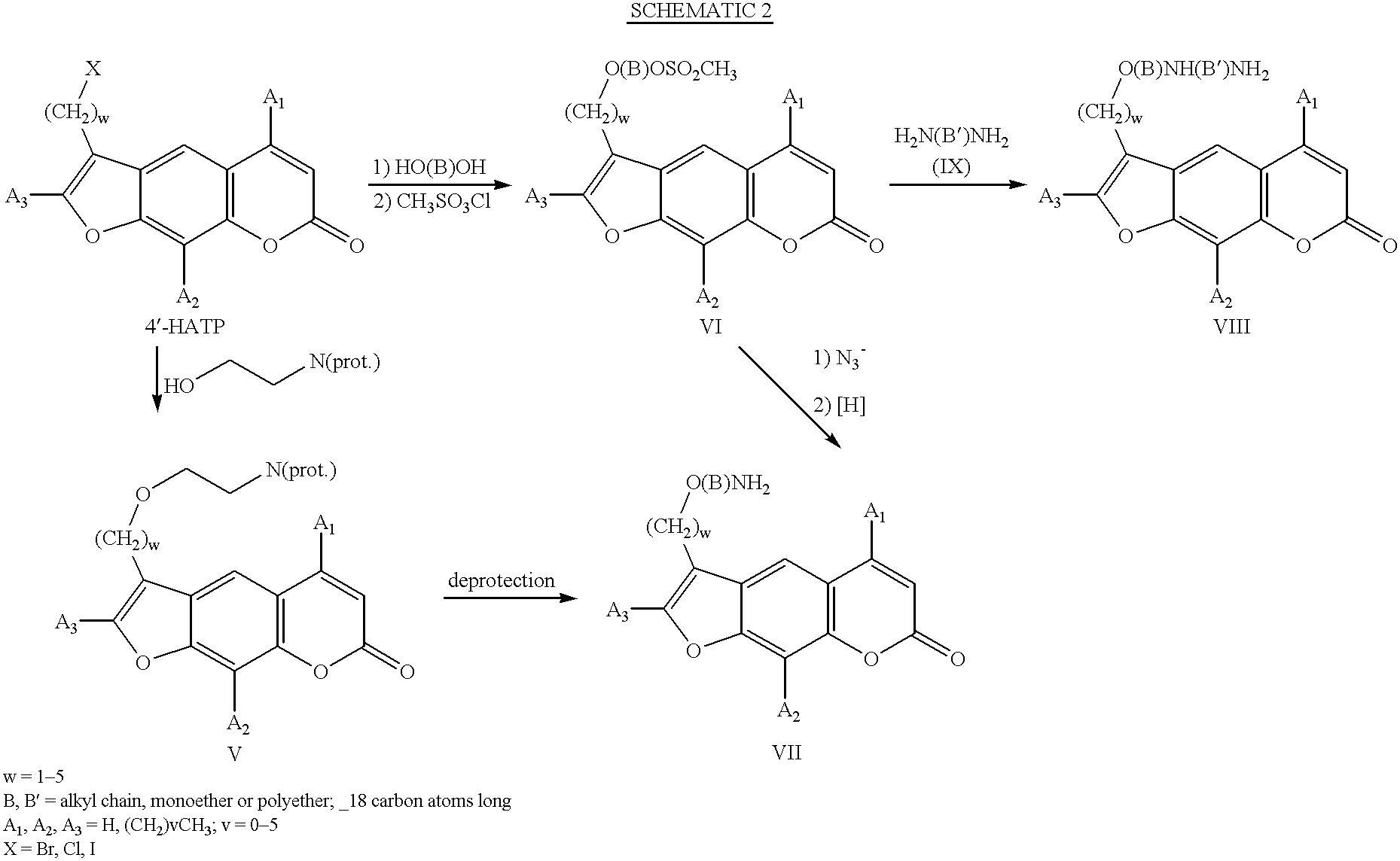 Figure US06469052-20021022-C00004