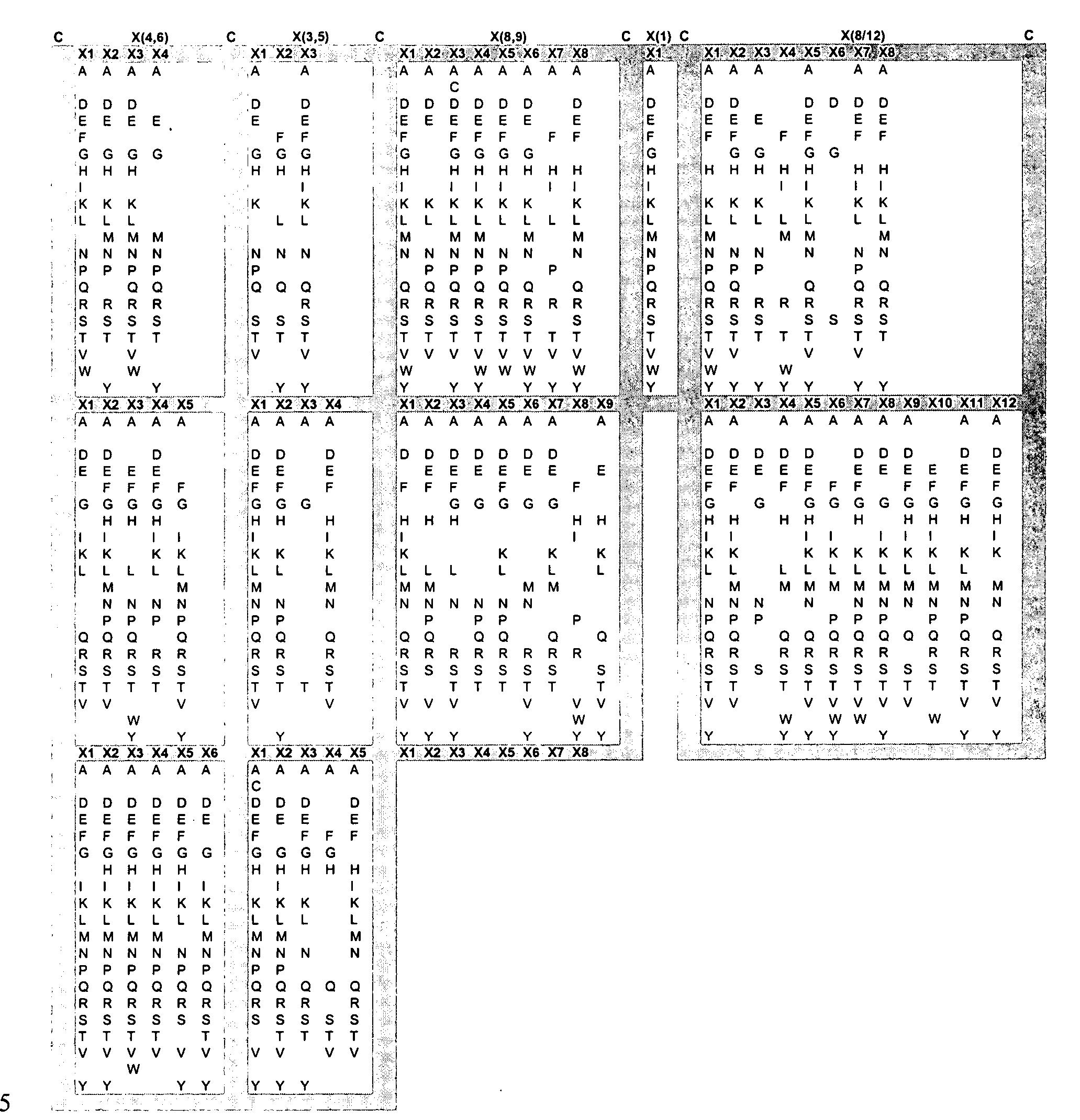 Figure US20050053973A1-20050310-P00007