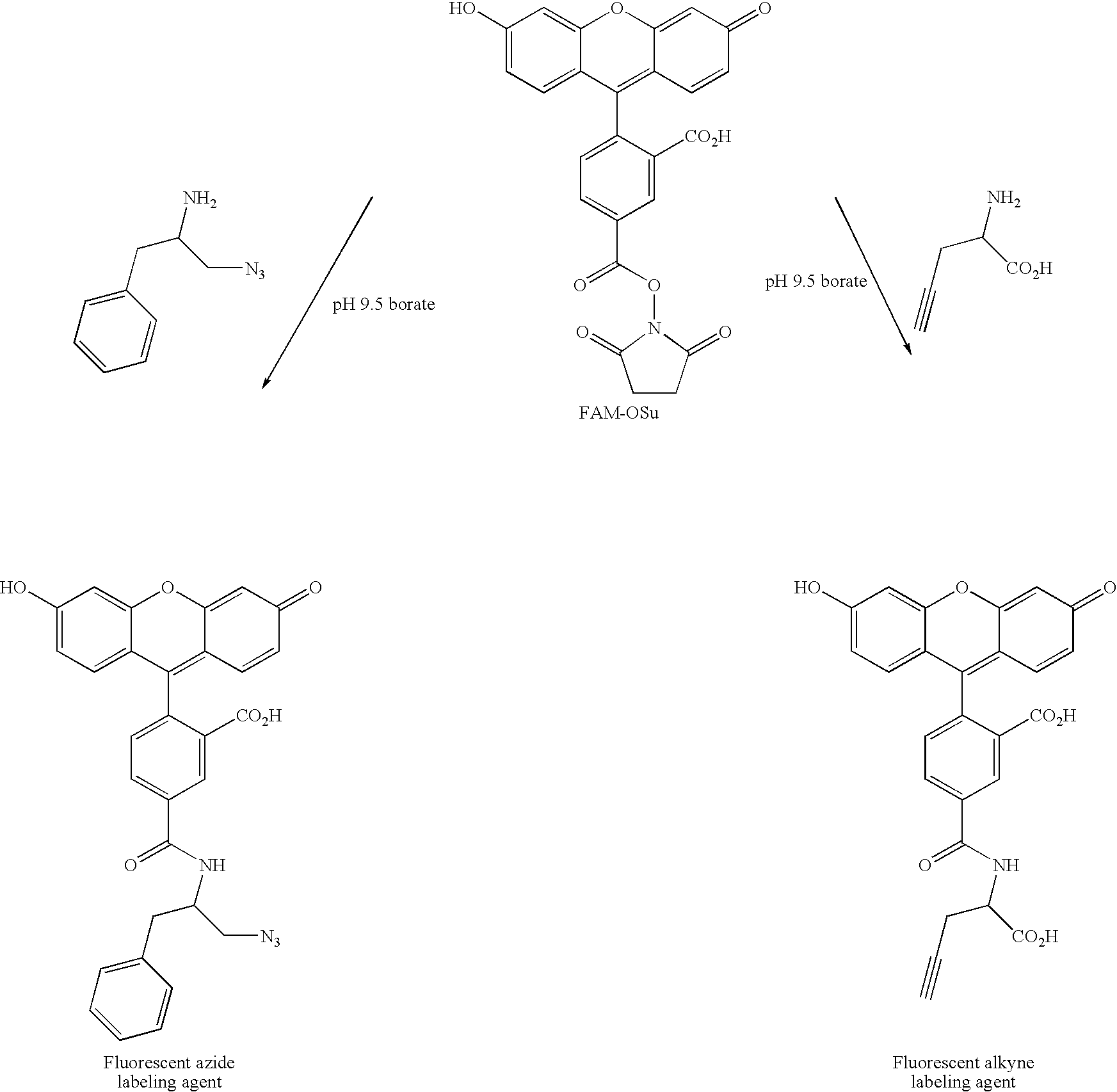Figure US07972994-20110705-C00130