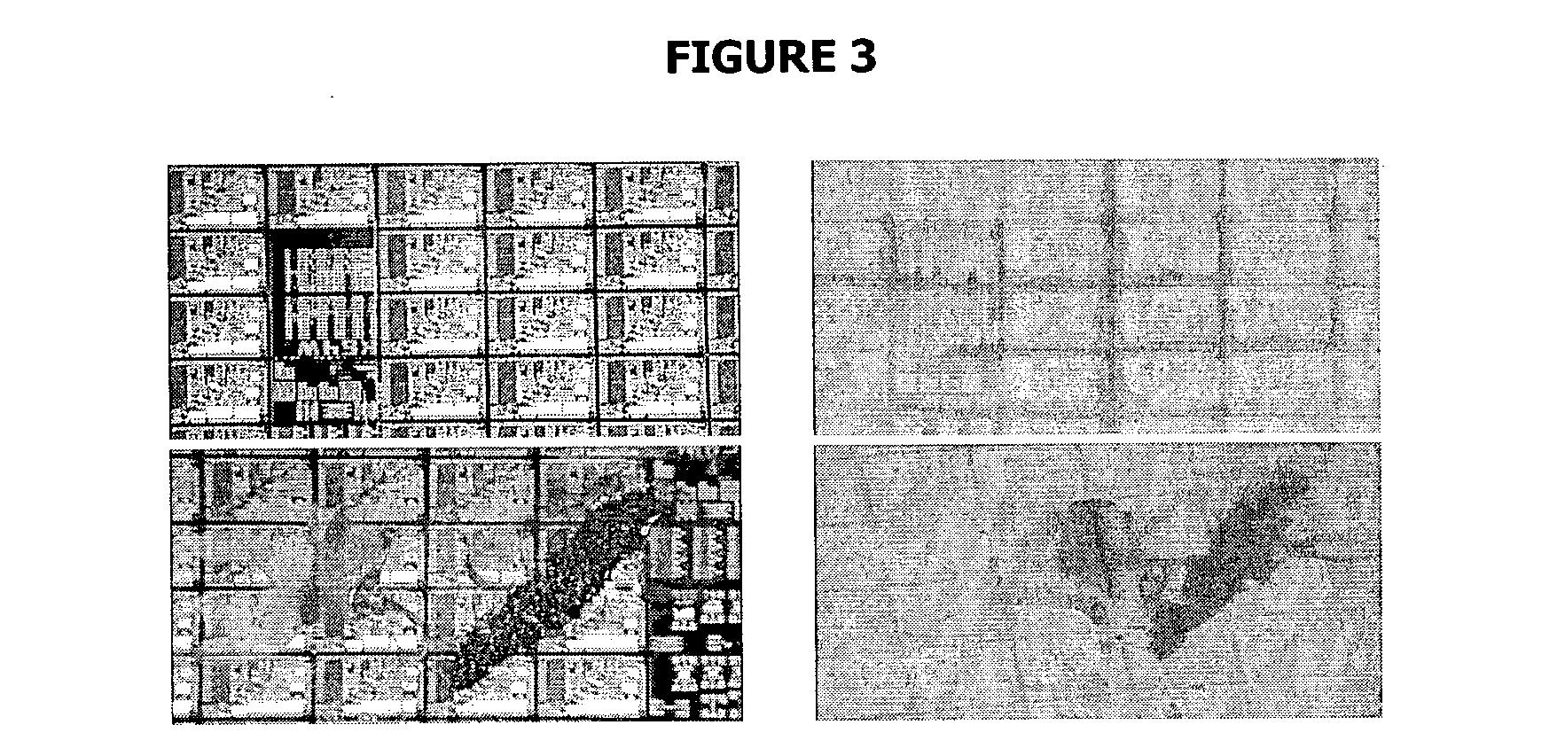 Figure US20040121618A1-20040624-P00003