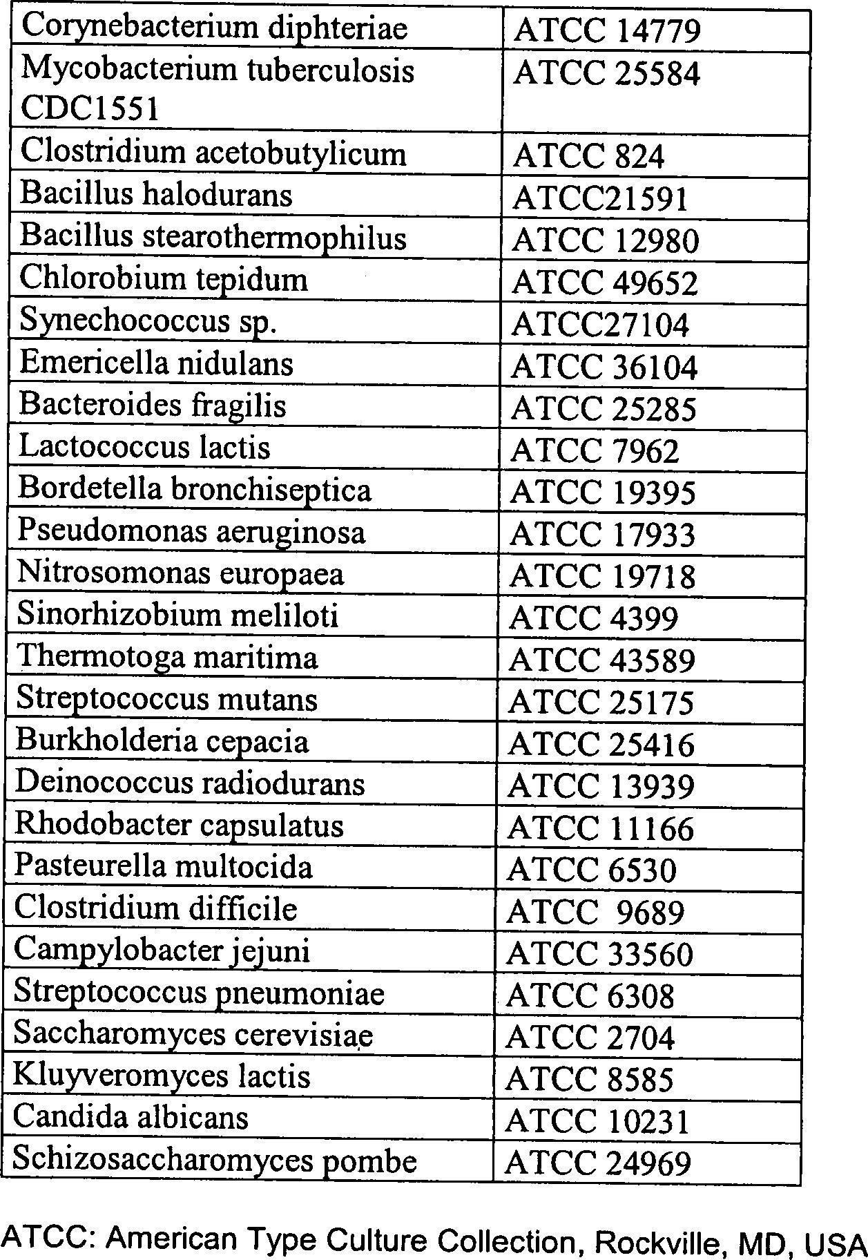 DE10239082A1 - Fermentative production of sulfur-containing