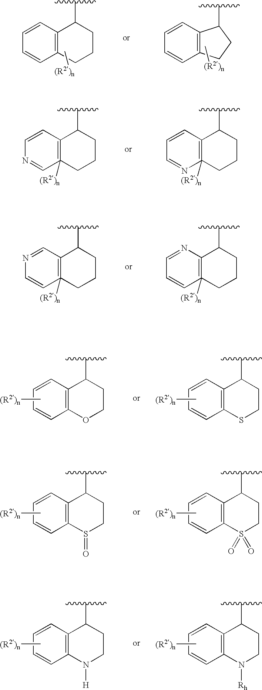 US20060045953A1 - Aromatic amides and ureas and their uses as sweet on