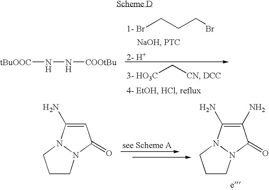 Figure US07488356-20090210-C00030